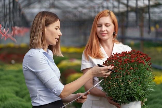 gmbh kaufen berlin GmbH-Kauf bedingungen leasing gmbh kaufen mit arbeitnehmerüberlassung